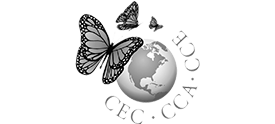 Logo-CEC-grey-tpr-275x124